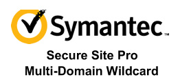 Symantec Secure Site 专业版 SAN 多域名通配符 SSL 证书